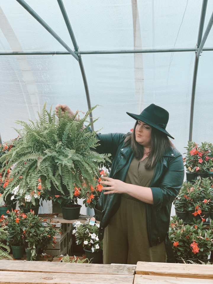 Tips for the Beginner Plant Lady